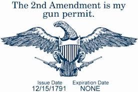 gun confiscation 21