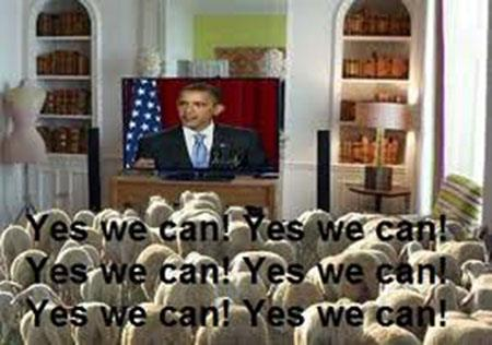 "The national anthem of the sheep ""Yes we can""."