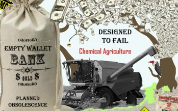 Designed to Fail: GMOs, Chemical Farming and Planned Obsolescence