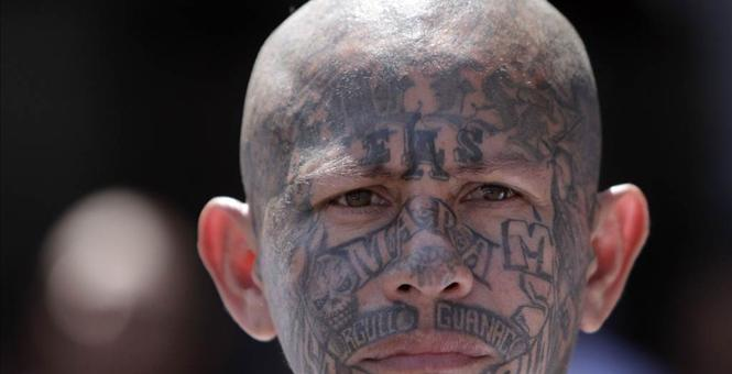 MS-13 fifth column gangsters are coming to your neighborhood armed with IED's, anti-tank weapons, automatic weapons and WMD's courtesy of last year's immigration crisis.