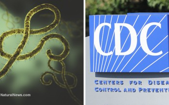 Ebola outbreak projections for the United States defy CDC's false assurances
