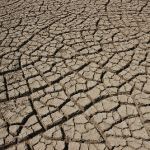 krause  california drought
