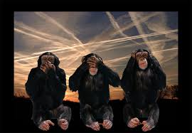 gore monkeys hear no evil