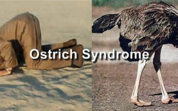 Americans & the Ostrich Syndrome