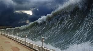 trump tsunami