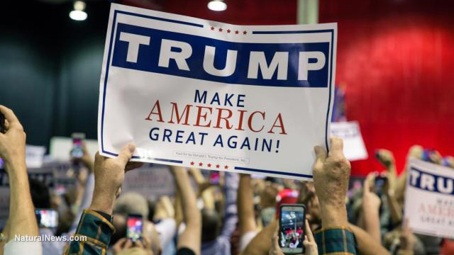 Editorial-Use-Donald-Trump-Campaign-Rally